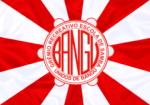 bandeira_do_gres_unidos_de_bangu